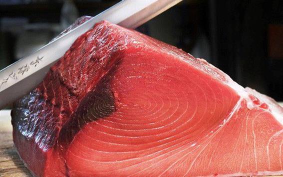 Nhập khẩu cá ngừ mắt to của Nhật giảm 23%