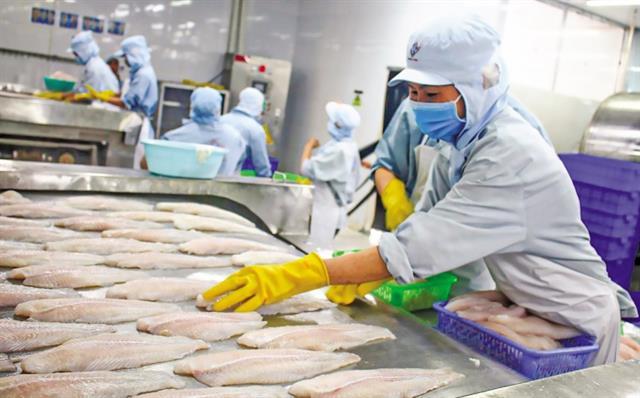 Thời gian thông quan thủy sản tăng gấp ba lần khi Trung Quốc siết chặt kiểm dịch