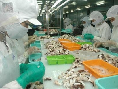 Cuối năm Mỹ tăng mạnh nhập khẩu bạch tuộc Việt Nam