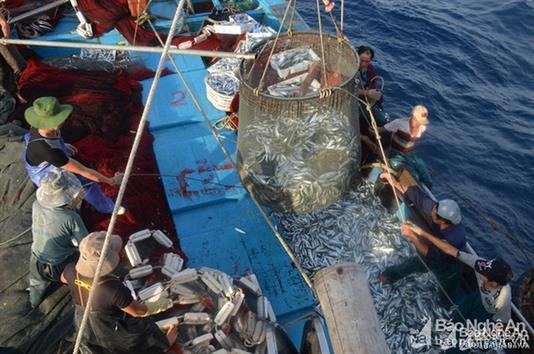 Cơ hội mới cho ngành khai thác thủy sản