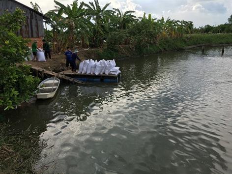 Vĩnh Long đẩy mạnh nuôi cá tra thâm canh theo hướng an toàn thực phẩm