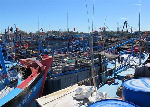 Lập quy hoạch hệ thống cảng cá, khu neo đậu tàu cá 2021 - 2030