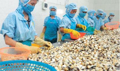 Hướng phát triển nào cho ngành nuôi thủy sản Thái Bình?