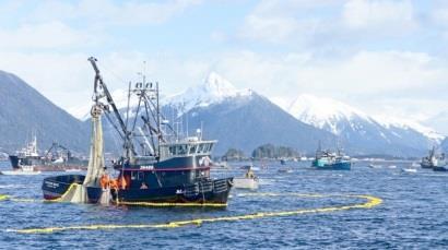 Nhật Bản hỗ trợ các nước Thái Bình Dương bảo vệ ngư trường khai thác