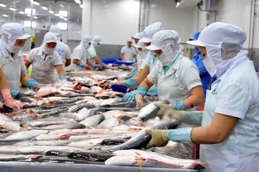 Phát huy tiềm năng các loài thủy sản nuôi chủ lực