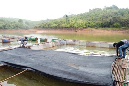 Tăng cường phòng chống rét cho thủy sản nuôi