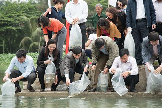 Hải Phòng: Thả hơn 10 vạn cá giống tái tạo nguồn lợi thủy sản