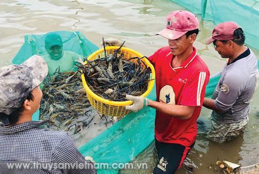 Phấn đấu sản lượng thủy sản quý 2 đạt 2,25 triệu tấn