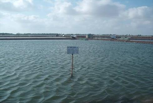 40 cơ sở nuôi thủy sản được chứng nhận VietGAP